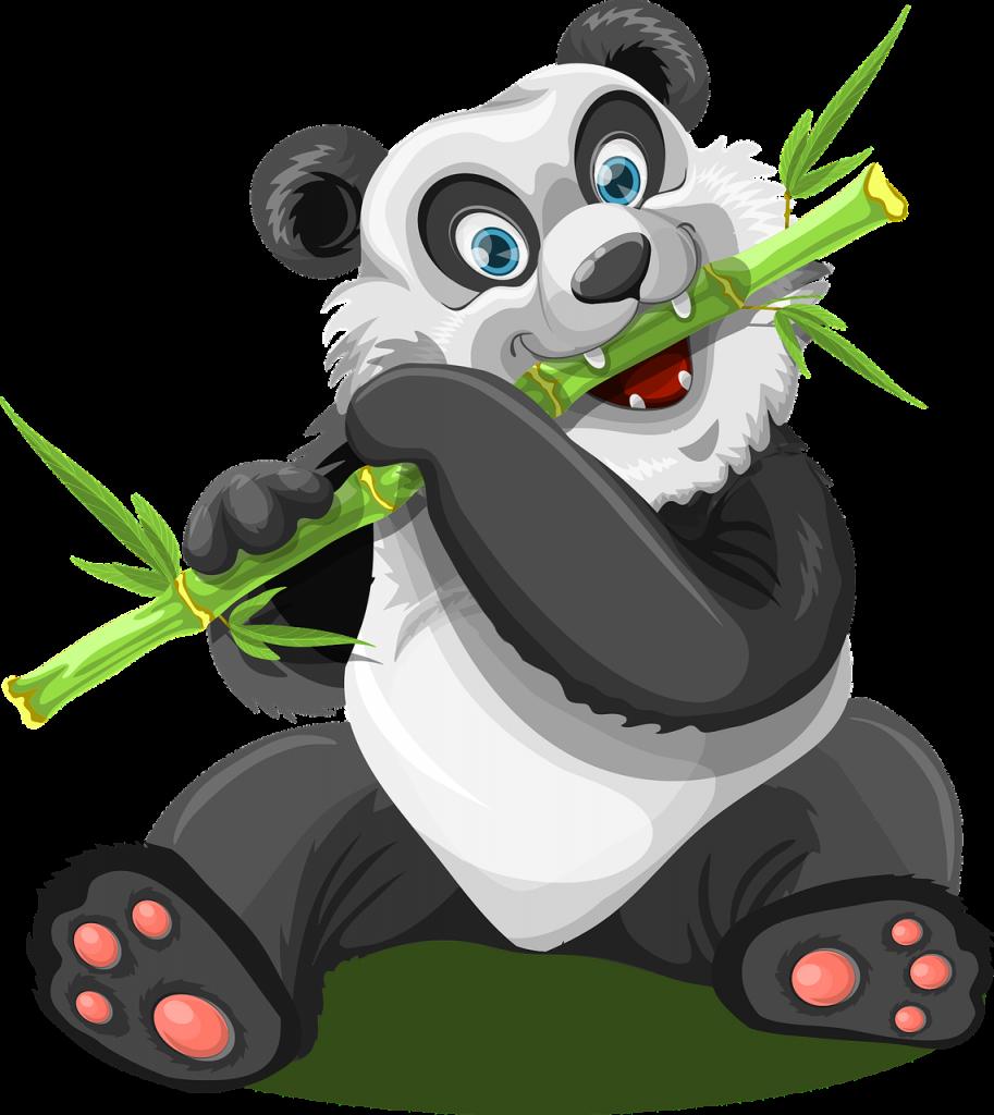 dlaczego bambus